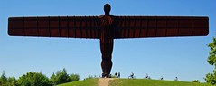 Wide angle or wide angel you decide (WISEBUYS21) Tags: theangelofthenorth angel north gateshead newcastle newcastleupontyne tyneandwear washington a1 iron sculpture wingspan wings sun blue sky rusty rita wisebuys21 sirantonygormley 20metrestall 54metresacross completedin1998 wideangle or wideangel greengrass gatesheadcouncil industry riveting rivet motorway