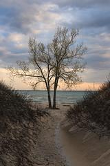 Sundbank Park, Ontario (monilague) Tags: park county prince edward sandbanks provincial