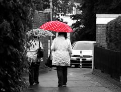 Tag 50 (Gitta Martin) Tags: rot sonntag regen colorkey schirm