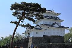 IMG_4755 (bon_j5) Tags: castle canon odawara eos60d