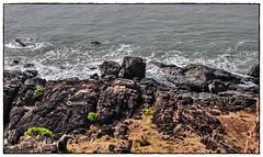 """Like as the waves make towards the pebbled shore, So do our minutes hasten to their end"" (Ramalakshmi Rajan) Tags: travel sea nature water rock nikon rocks kerala seashore bekalfort bekal keralatourism nikond5000 nikkor18140mm"