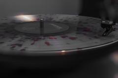 Vinyl (InOurEyes24) Tags: lightpainting photography 50mm nikon exposure snapshot vinyl record capture splatter lightroom paramore 50mmlens 50for50 50mmchallenge nikond7000