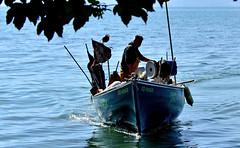 Retour de pche (Diegojack) Tags: nikon bateaux lman pcheurs tolochenaz scnedevie boiron nikonpassion d7200