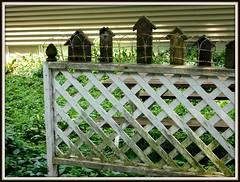 HFF!  FENCE FRIDAY (Visual Images1) Tags: fence birdhouse friday hff