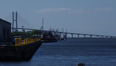 Sidney Lanier Bridge from Mary Ross Waterfront, Brunswick, GA - IMGP4293 (catchesthelight) Tags: maryrosswaterfront sidneylanierbridge brunswickriver brunswickgeorgia longestspanningbridgeingeorgia cablestayedbridge brunswickga