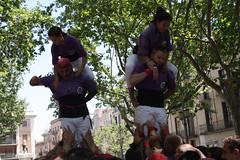 IMG_4603 (Colla Castellera de Figueres) Tags: de towers human sant pere castellers figueres pla pilars olot 2016 colla castells lestany xerrics actuacio gavarres castellera 2p5 7d7 5d7 3d7a esperxats picapolls