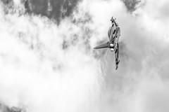 Manching - Germany (Nobsta) Tags: bavaria bayern germany deutschland fuji xt1 fujinon nik silverefex ingolstadt manching airbus defense military eads typhoon flugzeug