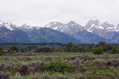 DSD_1528 (pezlud) Tags: tetonnationalpark tetons landscape mountains rock snowcapped