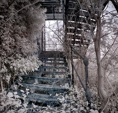 Derelexit (Infraredd) Tags: abandoned overgrown decay empty ruin spooky hidden infrared fireescape disused johnpilkington