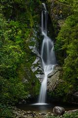 Dorothy Falls (Matthew Post) Tags: 2015 dorothyfalls hokitika lakekaniere newzealand westcoast kokatahi nz matthew post matthewpost canon 6d