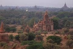 2016myanmar_0351 (ppana) Tags: bagan alodawpyay pagoda ananda temple bupaya dhammayangyi dhammayazika gawdawpalin gubyaukgyi myinkaba wetkyiin htilominlo lawkananda lokatheikpan lemyethna mahabodhi manuha mingalazedi minochantha stupas myodaung monastery nagayon payathonzu pitakataik seinnyet nyima pagaoda ama shwegugyi shwesandaw shwezigon sulamani thatbyinnyu thandawgya buddha image tuywindaung upali ordination hall