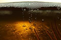 cold beer (notpushkin) Tags: hotcold macromondays