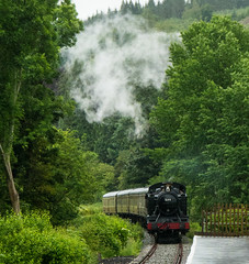 Llangollen To Corwen Steam Train (cocabeenslinky) Tags: world uk trees mountains green art heritage nature june wales train lumix photography countryside town site tank photos united small large railway kingdom steam unesco panasonic valley to welsh prairie dee standard gauge berwyn cymraeg llangollen gwr 2016 denbighshire 5199 corwen dmcg6 cocabeenslinky