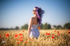 *** Sommer *** (bruderbethor) Tags: portrait licht sommer wiese sonne farben