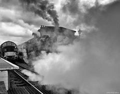 Steam Too (peterphotographic) Tags: p6180283sefexedwm olympus em5mk2 microfourthirds peterhall northweald northwealdstation essex eppingongarrailway england uk britain nik blackandwhite bw monochrome silverefexpro2 station steamtrain steam locomotive train railway engine restored 1940s diesel hidden
