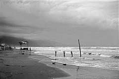 Caspian Sea, Nur County ($ALEH) Tags: blackandwhite iran highcontrast mazandaran  caspiansea   iran 364mp