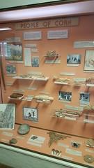 Depictions of ancient Puebloan way of life in the museum