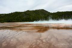 DSD_1497 (pezlud) Tags: yellowstone nationalpark landscape geyserbasin grandprismaticspring midwaygeyserbasin geyser park