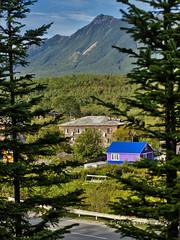 (Sakhalin, Russia) (Tatters ) Tags: house pine village russia sakhalin   tikhaya oloneo 2012