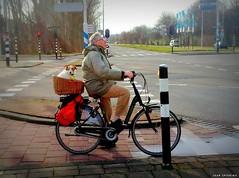 Man... bike... basket... dog. (jaap spiering | photographer) Tags: dog man holland color colour netherlands mobile nederland denhaag thehague manwithdog kleur 070 dogonbike manmethond hondopfiets jaapspiering jaapspieringphotographer jaapspieringfotografie