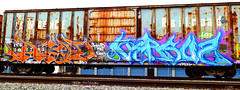 AGOD VERSUZ (=THE GERMAN SHEPARD=) Tags: graffiti crew graff lts rk agod kog 269 versuz