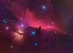 Horsehead Nebula (kappacygni) Tags: reflection night dark stars space nebula astrophotography orion astronomy phd ic434 horsehead emission deepsky horseheadnebula baader nebulosity flamenebula barnard33 starlightxpress eq6 tumblr Astrometrydotnet:status=solved qhy5 Astrometrydotnet:version=14400 sxvrh18 tmb92ss astro:subject=horseheadnebula bestastro astronomy4all astro:gmt=20130202t2340 Astrometrydotnet:id=alpha20130581941395