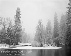 Winter 2012 - Yosemite National Park (Robert Oliver, photographer) Tags: ca blackandwhite bw film photography blackwhite photographer fineart photographic photograph 4x5 largeformat zonesystem viewcamera sheetfilm