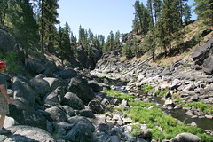 FRS100456 (Chance Agrella) Tags: california trees mountain mountains tree water pine forest river bed woods rocks stream timber feather canyon riverbed gorge wilderness rugged streambed riparian