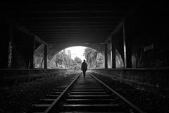 Paris, petite ceinture (flallier) Tags: paris pc montsouris 14e bnw bw nb noiretblanc blackandwhite tunnel voieferrée railroad railway chemindefer petiteceinture garedupetitmontrouge montrouge 75014