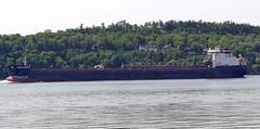 Algoma Mariner (Jacques Trempe 2,100K hits - Merci-Thanks) Tags: river ship quebec stlawrence stlaurent mariner fleuve algoma navire stefoy