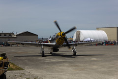 North American P-51D Mustang - 07 (notpsion) Tags: heritage field canon eos fly flying day free collection paine p51 550d t2i