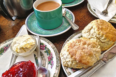 The Willow Tree Cream tea! (Jainbow) Tags: holiday tree cup cafe tea cream spoon east willow devon scone jam sidmouth saucer clotted strawvberry jainbow