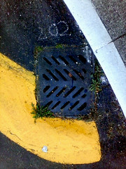 no. 202 (andreeah (urban colors)) Tags: city light urban white abstract color colour yellow landscape grey chalk construction shadows northwest pavement gray drain tacoma cracks 202 greengrass