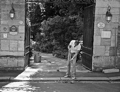 Sweeping the Leaves (Cameron Webb) Tags: street white black france nikon clean simple normandy bayeux d90