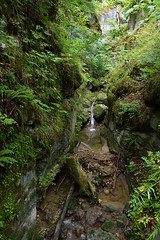 mystic moments (picturesbywalther) Tags: wood green water forest stones canyon steine wald canyons mystic schlucht teufelsschlucht schluchten hägendorf