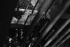 solitary (Orangedrummaboy) Tags: flowers trees red blackandwhite bw floral festival gardens bulb canon death spring community tulips gardening au capital australian grow australia monotone september greens bulbs canberra growing aussie dslr bandw act downunder floriade deadtrees centenary australiancapitalterritory commonwealthpark davidburke 2013 davidjburke canberra100 orangedrummerboy davidjohnburke© orangedrummaboyphotographycanberra djburke httpswwwfacebookcomorangedrummaboy thmccit httpstwittercomorangedrummaboy