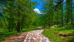 La Valle des Merveilles (FR) (Riccardo Spallone) Tags: france landscape la iso200 nikon ngc des 1200 18mm merveilles valle d90 18105mm spallone lavalledesmerveilles 16