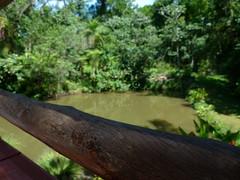 (IgorCamacho) Tags: lake rural landscape lago nice focus place scene paisagem cenrio lugar foco agradvel