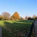 Hartington Park 22 November 2013