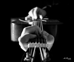 Guitar BW JPG (Michael Fouché) Tags: blackandwhite black dark hands hand guitar sidelight