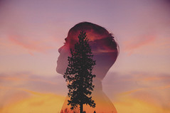 from within (Michellisphoto) Tags: pink boy sunset tree nature colors face silhouette yellow clouds colorful purple profile tall