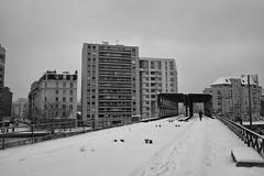 Paris, ligne de petite ceinture (flallier) Tags: paris neige snow pc chemindefer railroad pont petiteceinture 19 19e xix ourcq canal lavillette winter bnw