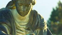Darmstadt - Alter Friedhof (bilderflut photography) Tags: germany deutschland hessen alemania tyskland allemagne darmstadt germania alemanha duitsland alterfriedhof almanya niemcy nemecko