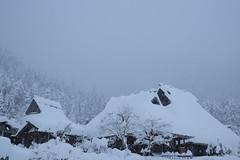 thatched village at Miyama in heavy snow /  (37) (double-h) Tags: snow thatch thatchedroof miyama     kayabukinosato  xe2  xf1855mmf284rlmois kitavillage
