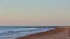 A lone seagull on the beach (BraCom (Bram)) Tags: sea shells holland beach strand canon sand surf widescreen seagull gull nederland thenetherlands noordzee zeeland zee northsea poles 169 meeuw branding schelpen breakwater zand schouwenduiveland palen burghhaamstede canonef24105mm golfbrekers bracom canoneos5dmkiii bramvanbroekhoven