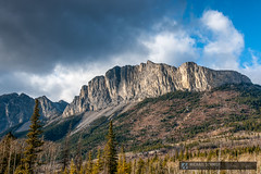 2008-11-15 Alberta Eckshaw Mountain-2 (Michael Schmidt Photography Vancouver) Tags: blue trees sky brown white mountain black green yellow clouds forest grey beige day cone large christmastree evergreen daytime rockymountains needles treeline slope gravel highaltitude musicalinstruments conifer talis westernnorthamerica bowvalleyparkway mediumsized sprucebeetles highaltitudes eckshawalberta engelmannsprucepiceaengelmannii rockymountainfirabieslasiocarpa rockymountainssubalpinefir subalpinefirabieslasiocarpa disputedstatus mountainsprucepiceaengelmannii silversprucepiceaengelmannii whitesprucepiceaengelmannii