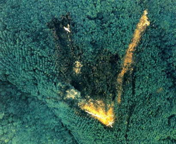 日本航空123号班机事故遇难人数超过500,是单架飞机的空难中死伤最惨重的一宗(图为失事地点)