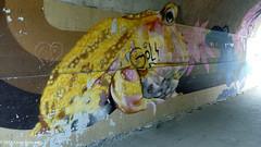 Underpass between Hills and Christchurch Meadows Caversham (2) (karenblakeman) Tags: uk underpass graffiti mural april christchurchmeadow caversham 2014 hillsmeadow cf14 challengefriday