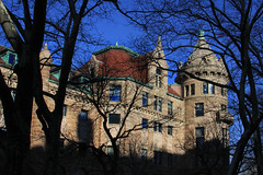 Tower Through the Trees (lefeber) Tags: city nyc newyorkcity trees windows urban newyork architecture downtown centralpark branches gables turrets americannaturalhistorymuseum