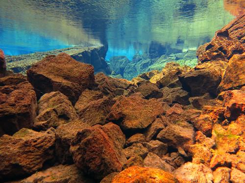 Iceland 2014 - Silfra dive - IMG_0553